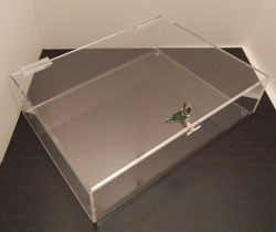 Acrylic Tray w/ Lid, Available in 2 Sizes